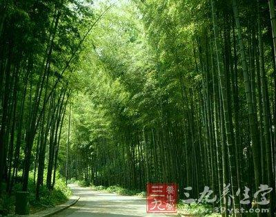 宜兴竹海风景区横跨江苏,浙江,安徽三省,方圆几十多万亩的竹子