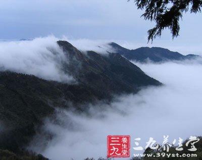 门票:南岳衡山(通票)100元   交通:      目前武汉有高铁直达衡山市