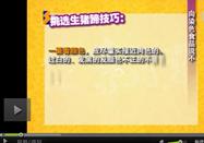 20120109健康56点视频:董金狮讲如何鉴别染色食品