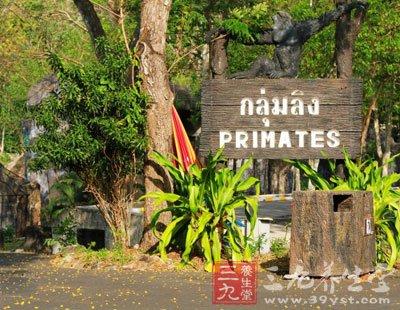 孕育了丰富的野生动物,公园总面积约5万rai(泰国土地单位,1rai约为484