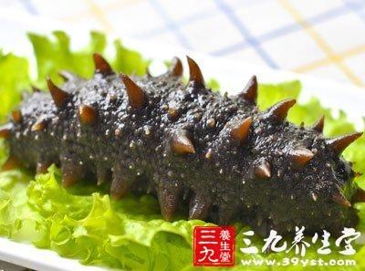 心形海生动物