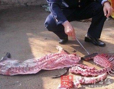 猪肉是现在生活人们经常吃的一种食物,如果吃到不健康的猪肉对身体有