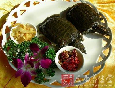 食谱的做法美食4大全纵享甲鱼五味肉(3)-三沿江路美食v食谱图片