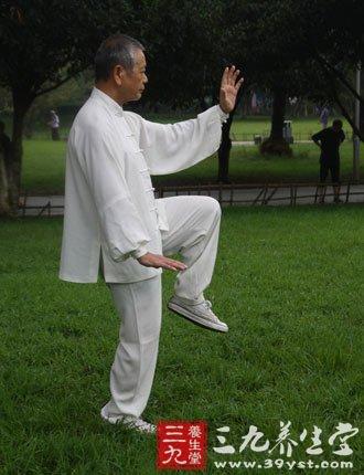 陈氏太极拳22式视频图片