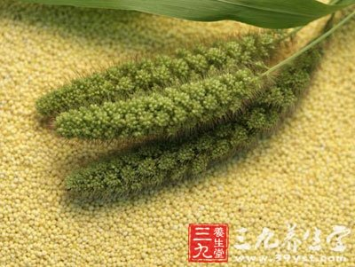 小米的储存方法