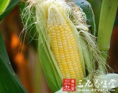 老玉米和嫩玉米的区别