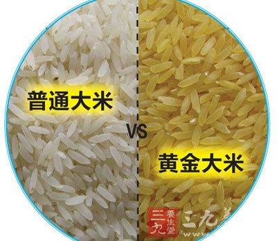 转基因黄金大米事件_湖南转基因黄金大米事件转基因大米的鉴别图