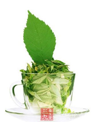 绿茶有哪些品种?