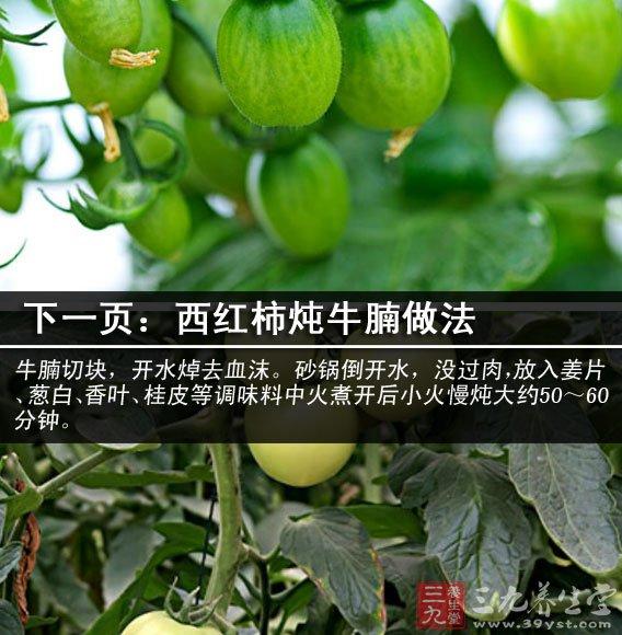 西红柿的营养价值 奇特美白养颜加排毒功效