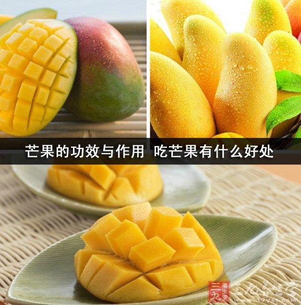 芒果几乎是人人都喜欢吃的一种水果之一,芒果口味酸甜。有很高的营养价值,我们平时经常吃芒果,那么大家知道芒果还有什么其他的功效和作用吗?吃芒果的好处有哪些?下面小编就带着大家一起去看看吧!   芒果的功效与作用    1、止呕、止晕。吃芒果对于眩晕症、美尼尔综合征、高血压眩晕、恶心呕吐等都有不错的疗效。在古代,凡漂洋过海者,无不随身携带一些芒果,以解晕船之症。果肉或以芒果煎水进食,对抑制孕妇作呕也有很好的效果。   2、降低血脂、胆固醇。芒果能降低胆固醇、甘油三酯,常食有利于防治心血管疾病。   3、祛