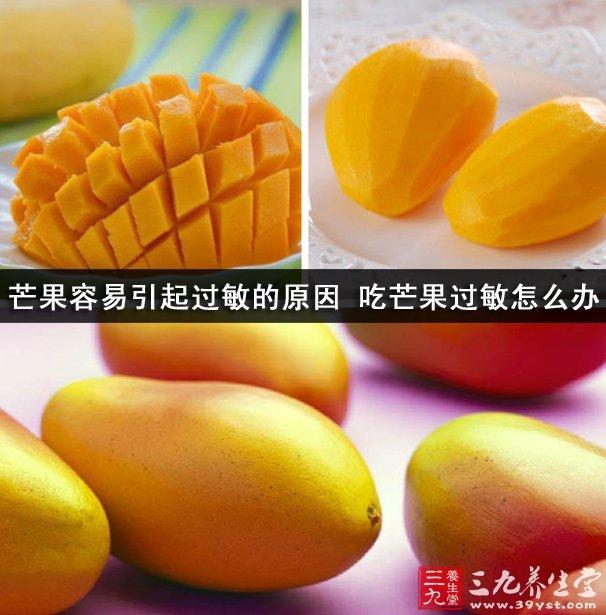 """芒果是种人人都熟悉了解的水果,它是产于热带地区的水果,营养价值也是很丰富的,被人们称为是""""热带果王""""。喜欢吃芒果的人也是有很多的,但是不少了吃芒果会过敏。今天小编就给大家介绍下芒果容易引起过敏的原因吧。   夏天到了,大街上有着各种各样的水果,琳琅满目的。芒果也是其中之一受大家喜欢的水果,但是不少人抱怨他们吃完芒果都是有点过敏,这是为什么呢?"""