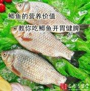 鲫鱼的营养价值 教你吃鲫鱼开胃健脾