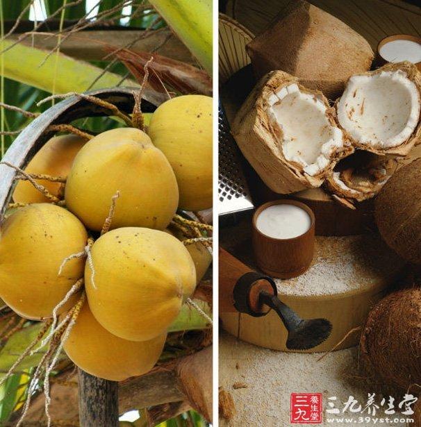 椰子核雕刻图片大全