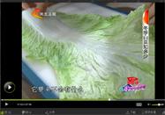 20131121河北卫视家政女皇:张晔讲白菜的功效