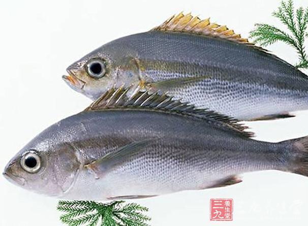 现在的生活水平比过去好很多了,也促使了养生事业的发展,饮食养生是生活中最常见、最受追捧的养生方法之一。在我们身边总会有很多食物具有保健功效。下面这十款美食,多吃能够让你预防疾病,一起跟着小编了解下吧!   十类食物多吃对身体好   一、脂质鱼   鱼类中含有大量的脂肪酸,但是Omega-3脂肪酸主要在金枪鱼、大麻哈鱼中最常见,这种脂肪算能够有效的帮助人体对抗疾病,还能降低血脂中的脂肪量,对于预防心脏有关的血凝具有极佳效果。    二、蔬菜类食物   抗疾病食物中,蔬菜也是最好的一种了哦。这些蔬菜都包括