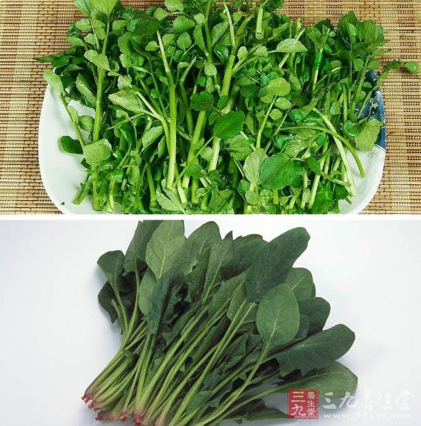 西洋菜防止臉部水腫