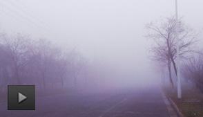 新生儿适合在雾霾天出行吗