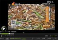 20160917家政女皇栏目:姜波讲葱油面的做法