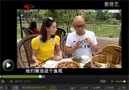 2016109食话实说全集:红烧鹅的做法