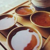 苦丁茶的妙用有哪些
