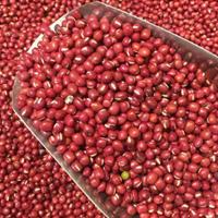 红豆的功效与作用