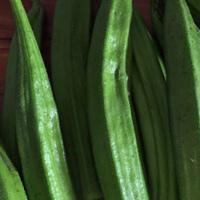 秋葵的營養價值 如何挑選秋葵