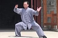 太极拳教程 太极拳基本功如何练好太极拳的松