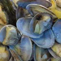 春季吃什么 适合春季吃的海鲜有哪些
