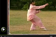 杨氏太极拳教学 详解杨式太极拳的功用和练习方法