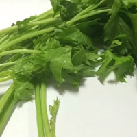 芹菜的功效与作用 芹菜不能与什么一起吃