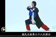 太极拳视频 罗子真太极拳38式教学视频