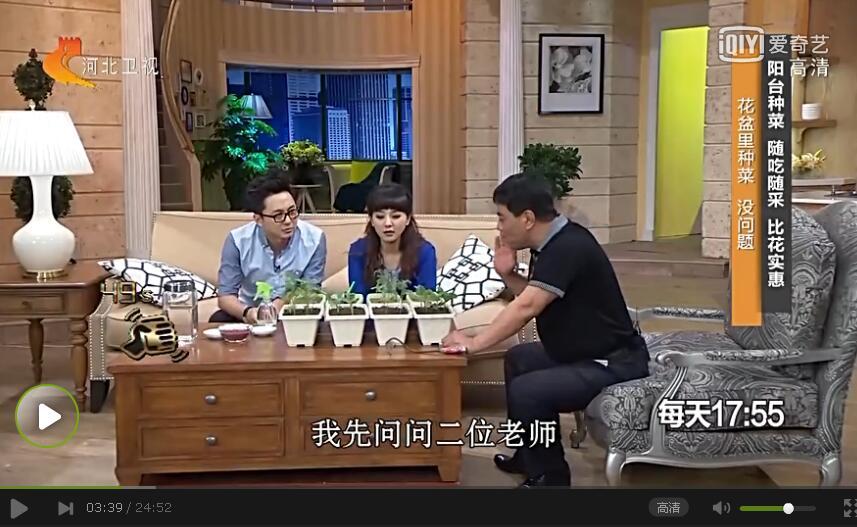 20170414家政女皇栏目:张贵春讲在家也能种果蔬
