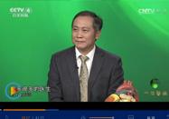 20170717cctv4中华医药视频:李守军讲罕见的心脏