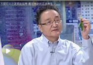 20170819万家灯火视频栏目:刘玄重讲菠菜的养生功效
