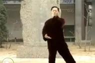太极拳视频 武式太极拳四字诀练法