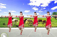 广场舞歌曲 站在草原望北京的动作教学