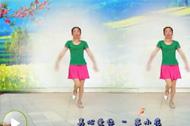 广场舞教学 情歌风舞蹈真心爱你教学展示