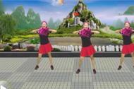 广场舞歌曲 《火花》 正反面教学