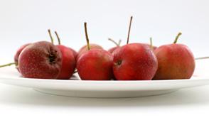 适合冬季的养生食疗方有哪些