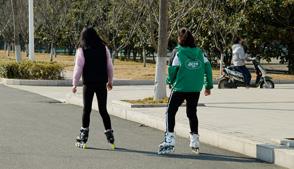运动与人体消化系统的关系是什么