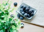 宝宝能吃蓝莓吗