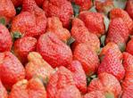 贫血吃草莓可以补血