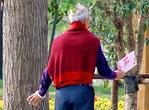 中老年胃溃疡发病率较高