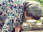针灸缓解老人更年期病症