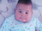 婴儿补钙海带的3大做法