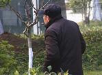 20130602湖北卫视生活帮:治脚气的偏方