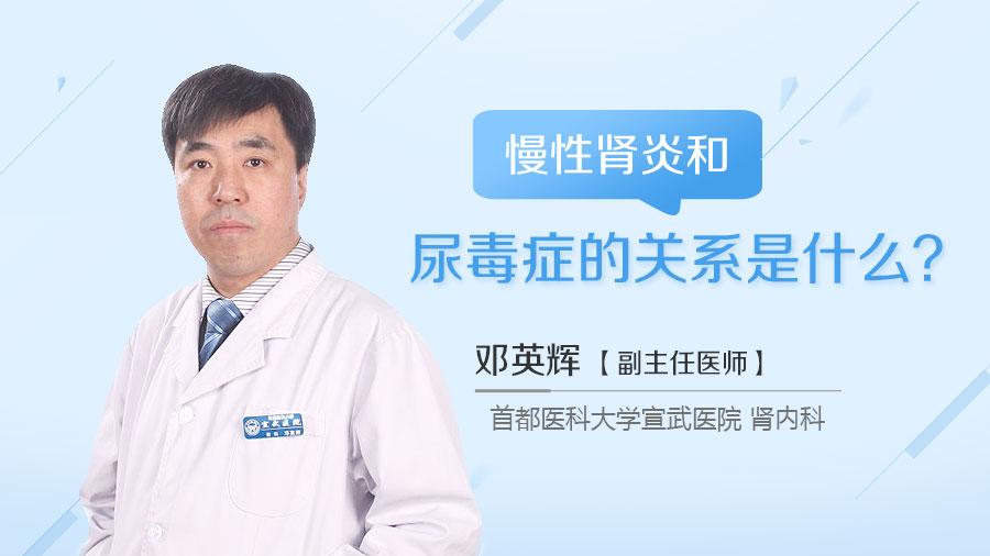 慢性肾炎和尿毒症的关系是什么