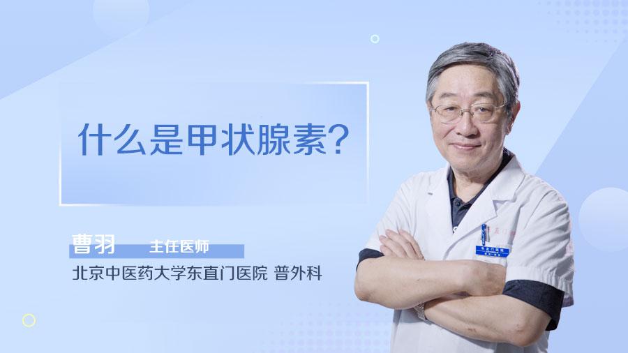 什么是甲状腺素