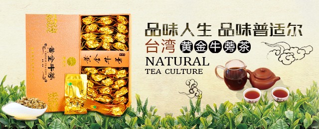 品味人生 品味普适尔台湾黄金牛蒡茶