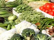 蔬果口感不如从前 与过度使用化肥有关吗